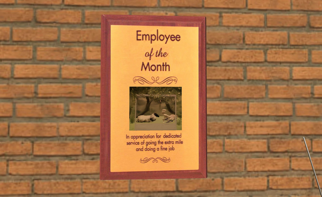 Poll of the Day: Employee Qualities