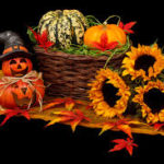Poll of the Week: Halloween Decorations