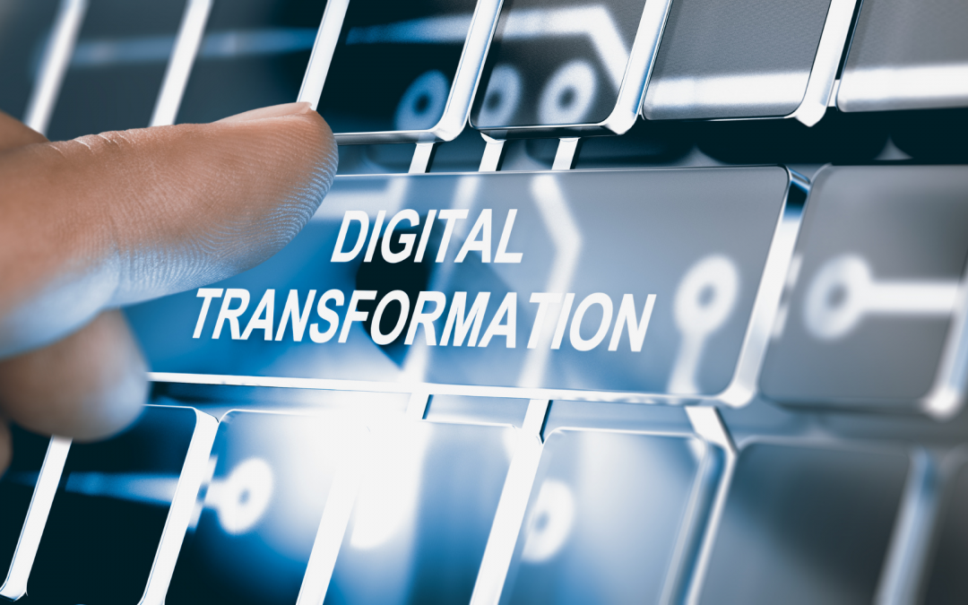 DIGITAL TRANSFORMATION: Ambidexterity: the best way to strategize your family business (by Renata Barcelos)